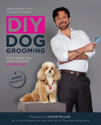 choose a dog groomer
