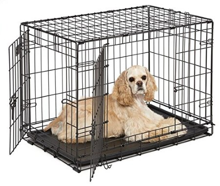 dog crate for crate training