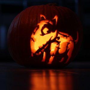 Halloween Dog Skeleton Decorations