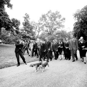LBJ walking beagles