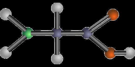 amino acid glycine