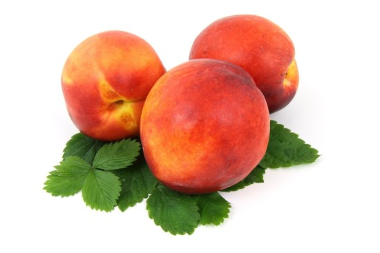 peaches and other fruits with pits