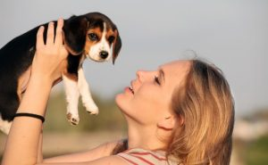 buy pet insurance when pup is young